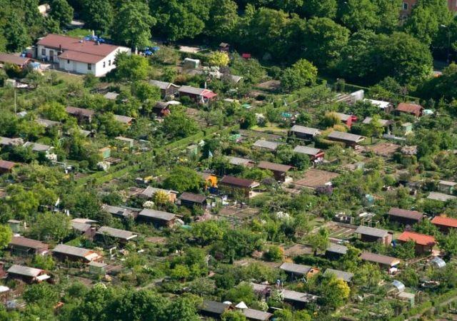 Rodzinne ogrody działkowe – hit czy kit?
